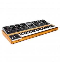 Moog One - 16 voice